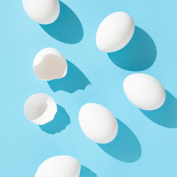 Eggs on a blue background